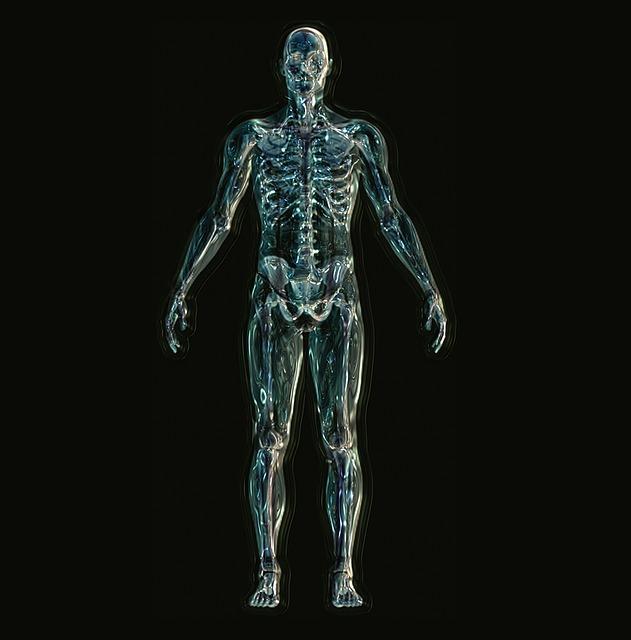 身体の筋肉や内臓などが透けて身体の骨格が見えている画像