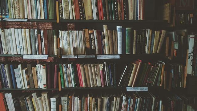 本棚に様々な本が並んでいる風景