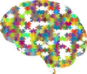 カラフルな脳の画像