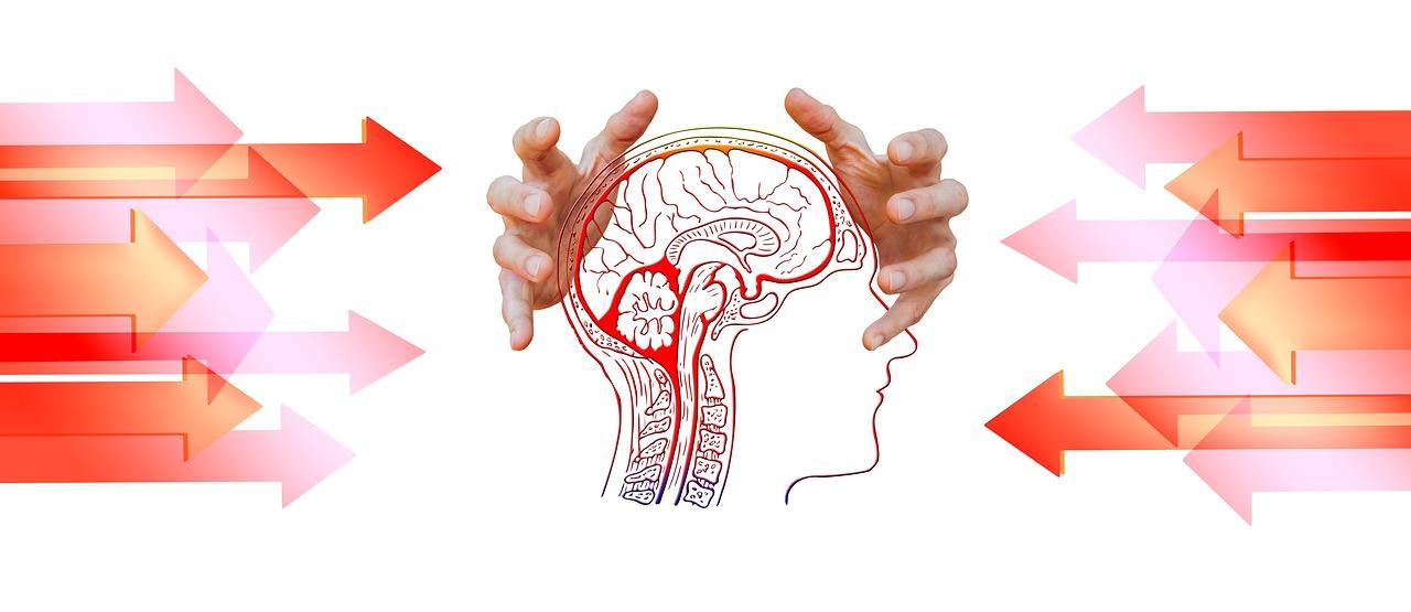 両手で人間の頭(脳が透けている)を包み込む画像