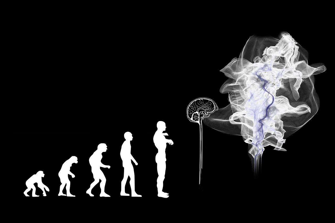 人間が進化していくイメージ