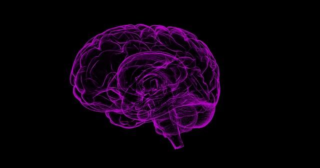 黒い背景に紫色に透けた脳が描かれた画像