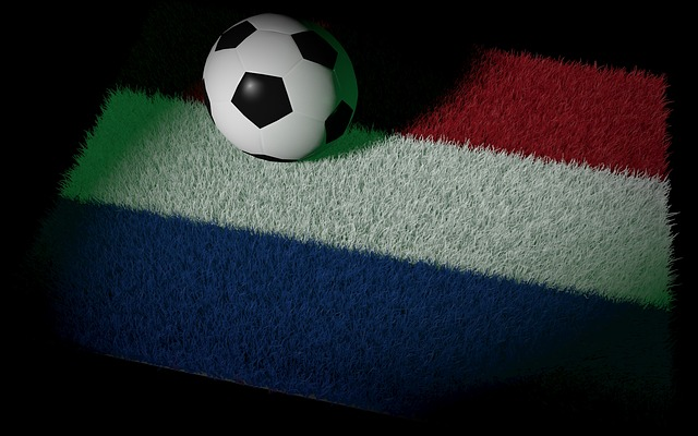 オランダ国旗カラーの芝の上にサッカーボールが置かれている画像