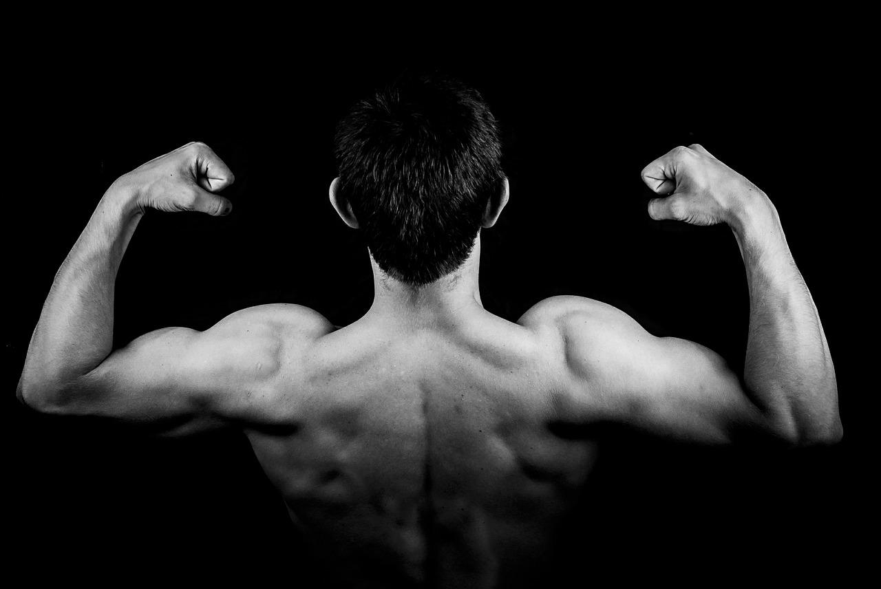 背を向けた男性が両腕をかかげて上半身の筋肉を見せている画像