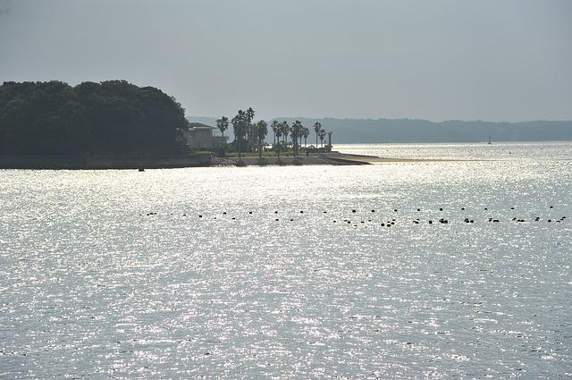 海側から見た伊勢志摩の海岸沿いの風景