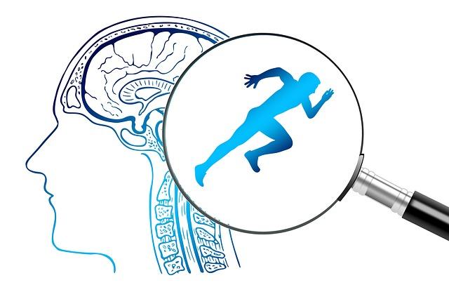 脳をルーペで拡大した中に、力強く走っている姿が映し出されているイラスト