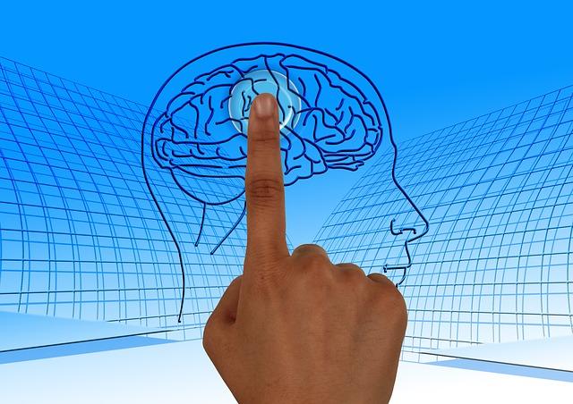 人間の脳のイラストを人差し指でタッチしている画像