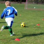 サッカーにおける学習転移とワーキングメモリー